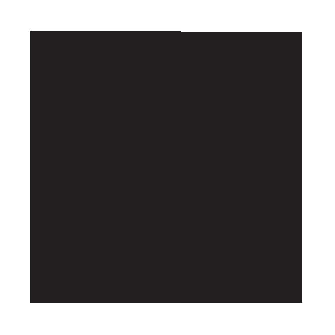 logo AMAG _FINAL