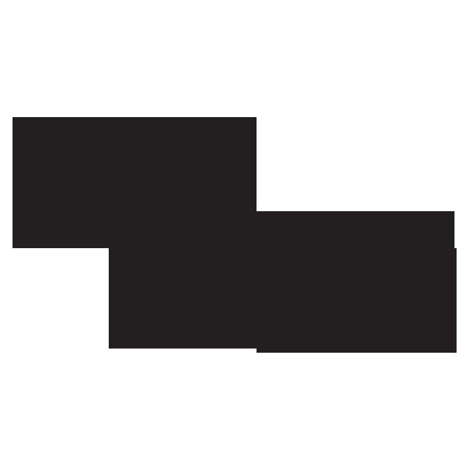Logos iS_final